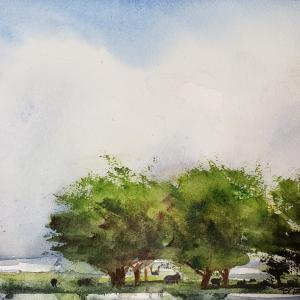 """SUMMER SKIES 8""""x11"""" watercolor, $375 matted and framed"""