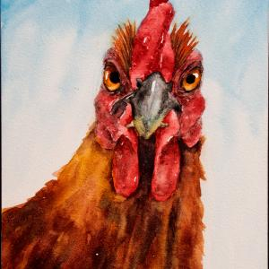 """MISTER 5""""x7"""" watercolor, $95"""