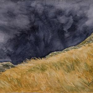"""ONCOMING STORM 9""""x12"""" watercolor, $220"""