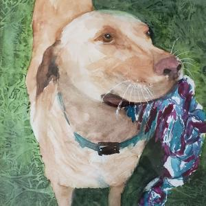 """PLAY WITH ME 12""""x12"""" watercolor, $275 matted and framed"""