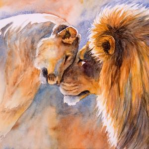 """Lions in Love, 11""""x15"""" watercolor, $250"""